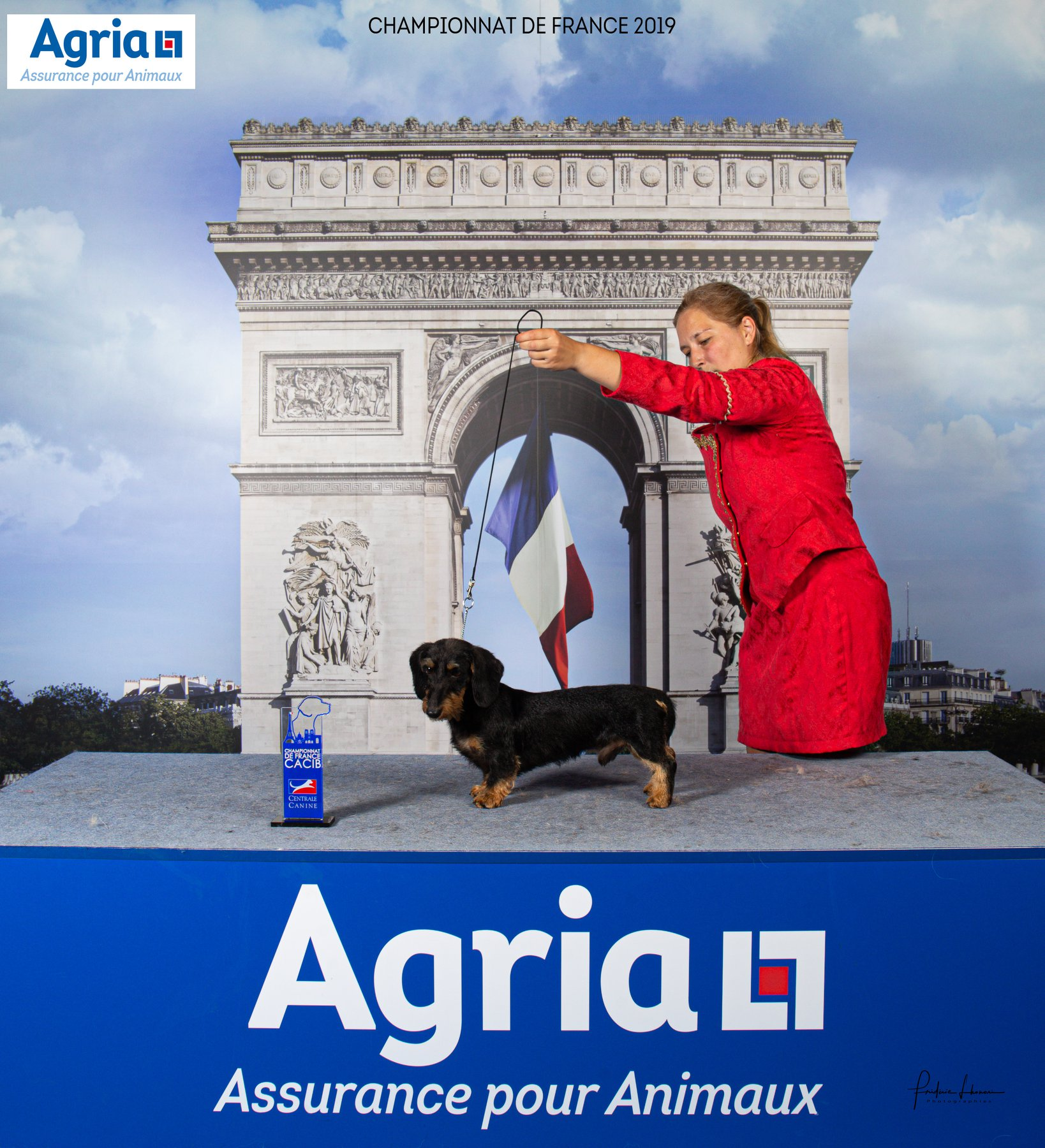 EXPOSICION INTERNACIONAL DE PARIS 2019